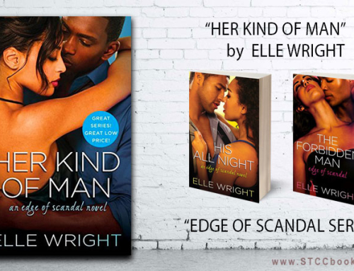 June 2016: Her Kind of Man by Elle Wright